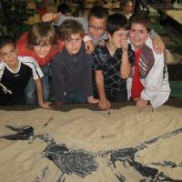 10-11-expo-dino (3)
